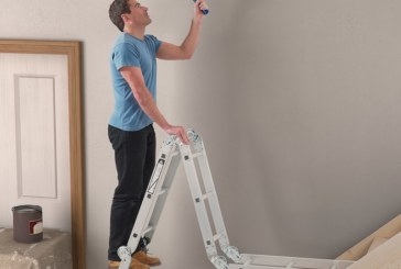 Up and Down with Werner Ladders