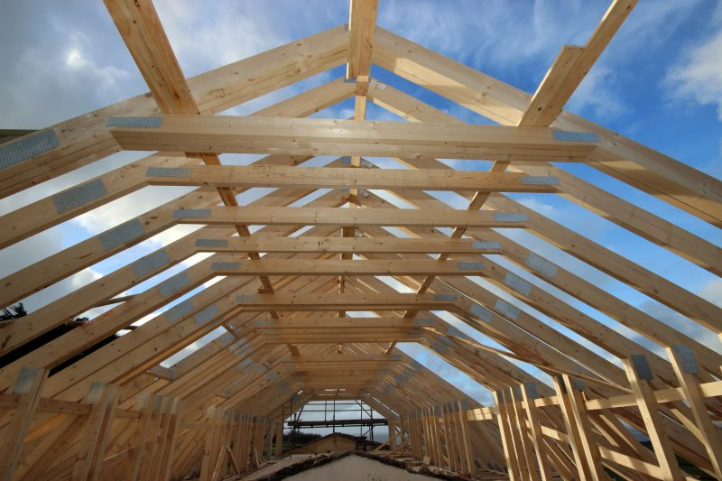 Roof Truss Project - Professional Builder