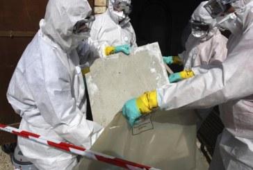 Asbestos Advice