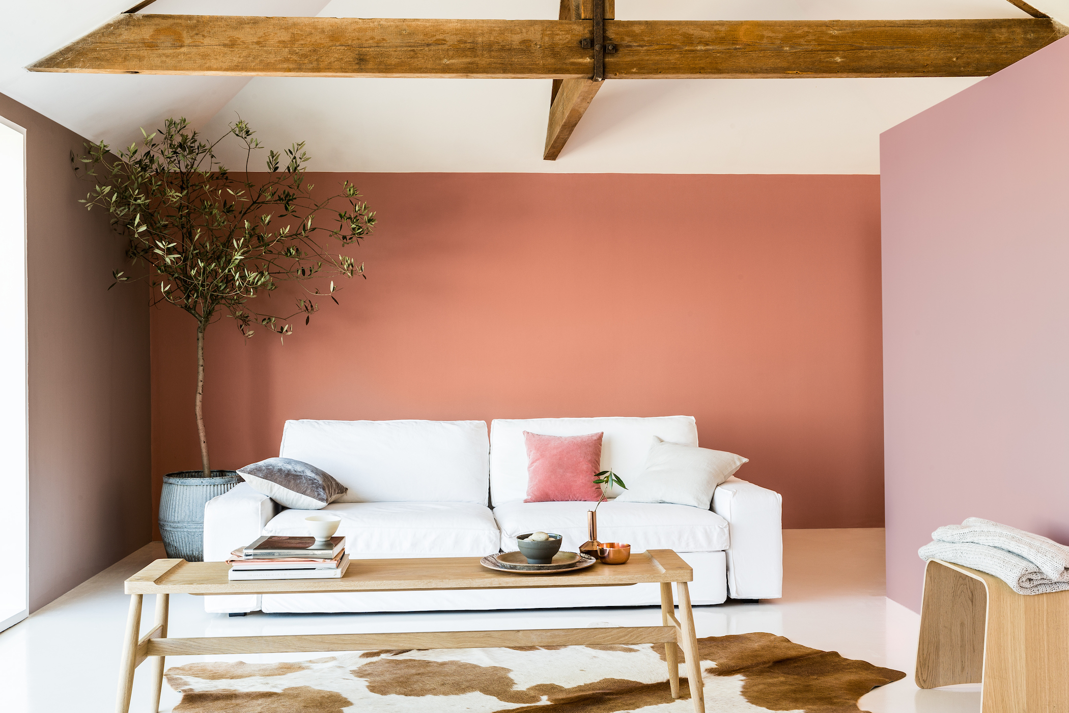 Dulux Trade Guide to Injecting Colour