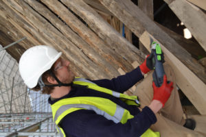 festool conservation project
