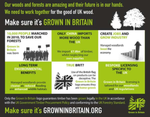 gib timber infographic