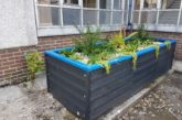 ACO adopts innovative approach for small-scale SuDS application