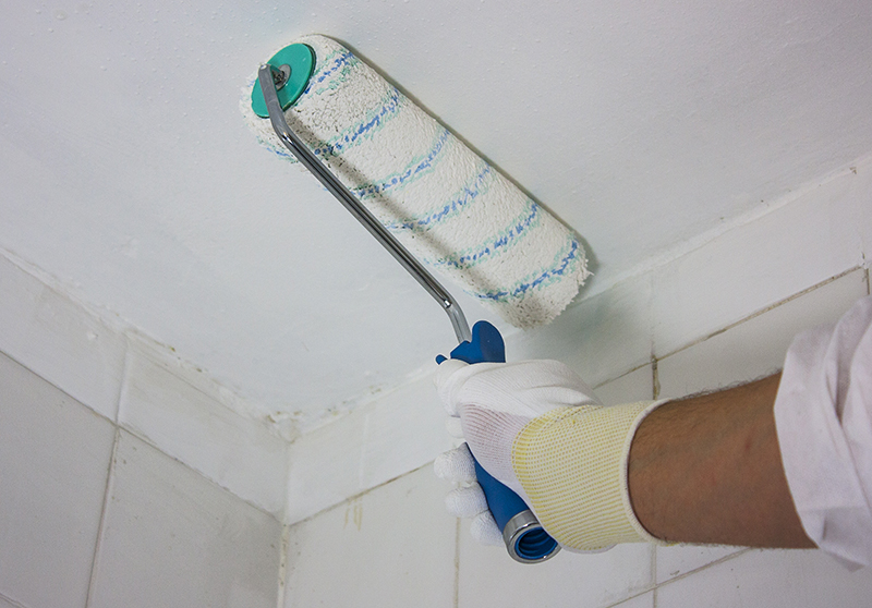 Eco-friendly mould-prevention paints