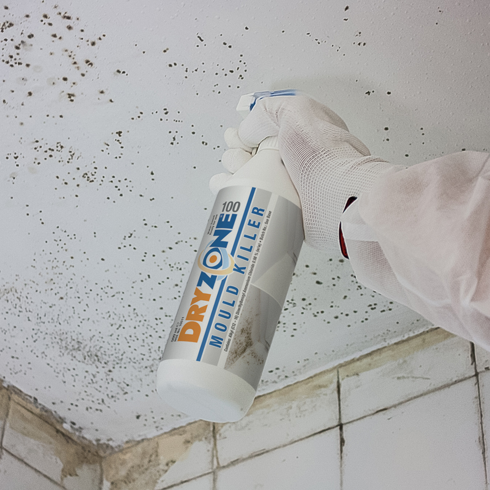 How to eradicate mould growth