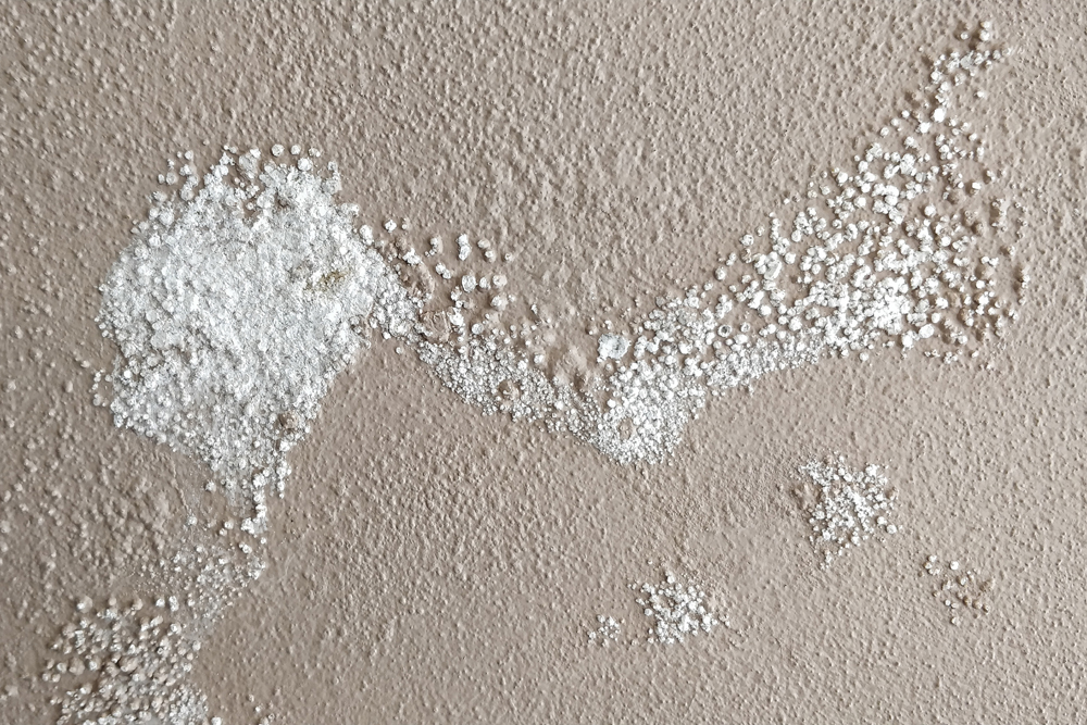 Inappropriate Replastering Systems (5)