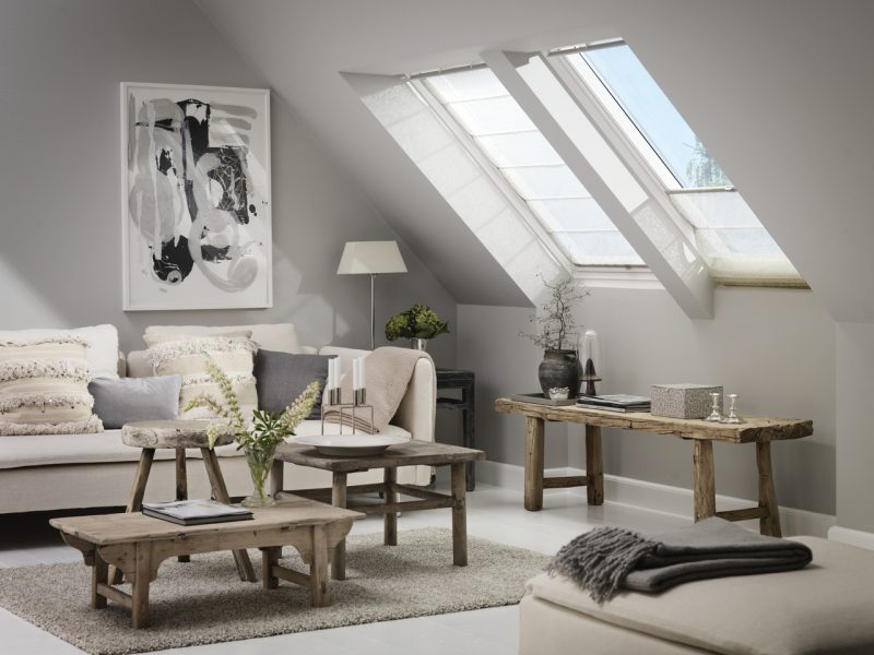 Velux Saving Daylight Professional Builder